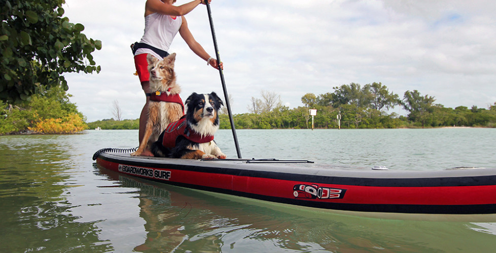 Top 10 Tips for Standup Paddling with Your Dog