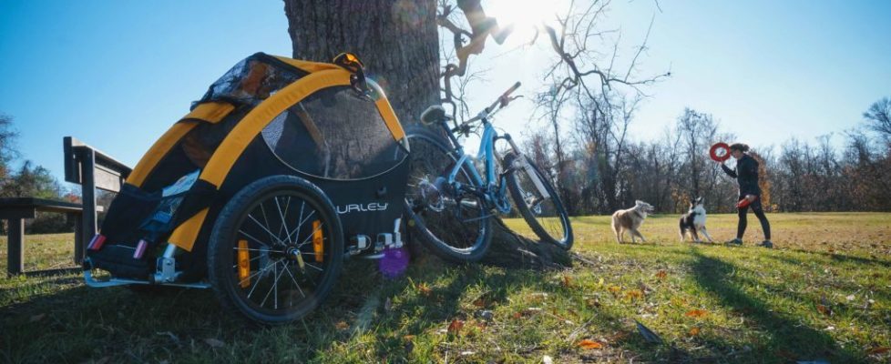 HOW Series: Training Dogs for Bike Trailers Part 3
