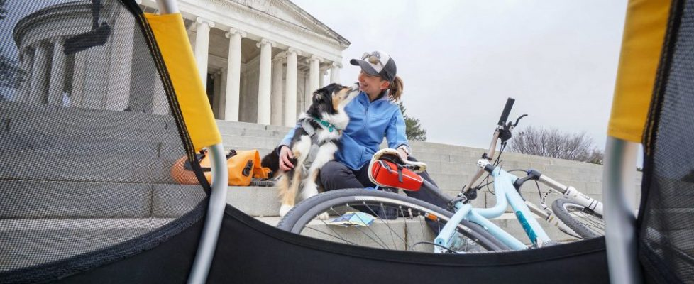 Touring D.C. With Kona